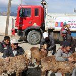 2015_kurban_sonrasi-1