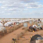 somali_2011-2