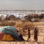 somali_2011-20
